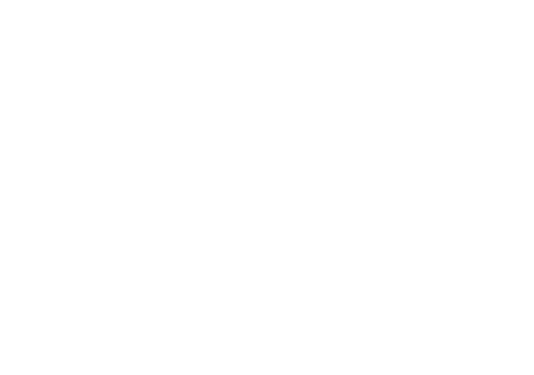 South Dragon House